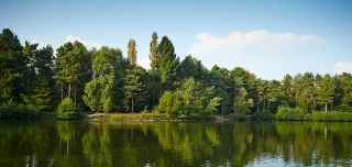 Center Parcs bookings