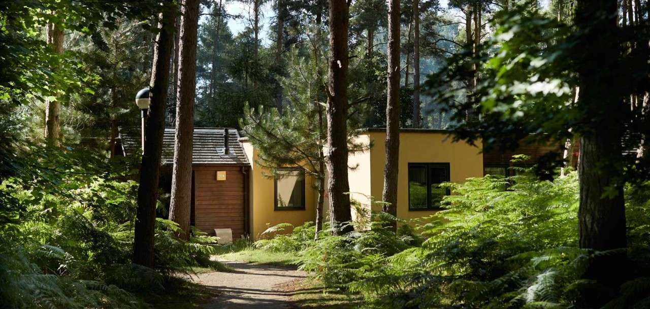 Lodge in the forest