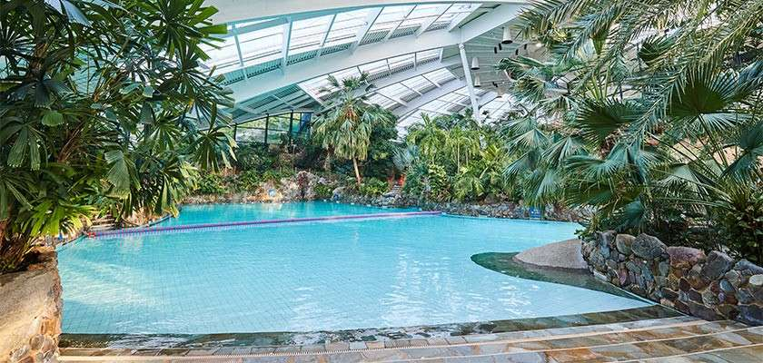 Subtropical Swimming Paradise