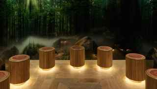 Tree stump style stools curving round a woodland decorated room.