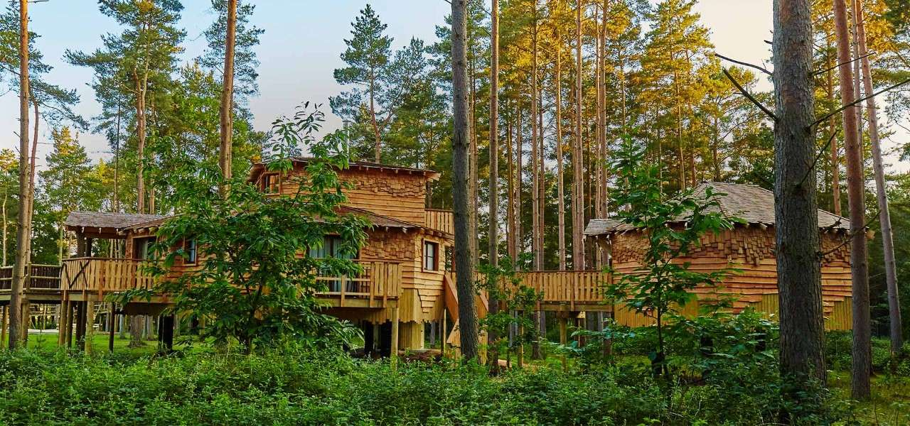 Woburn Forest Treehouse